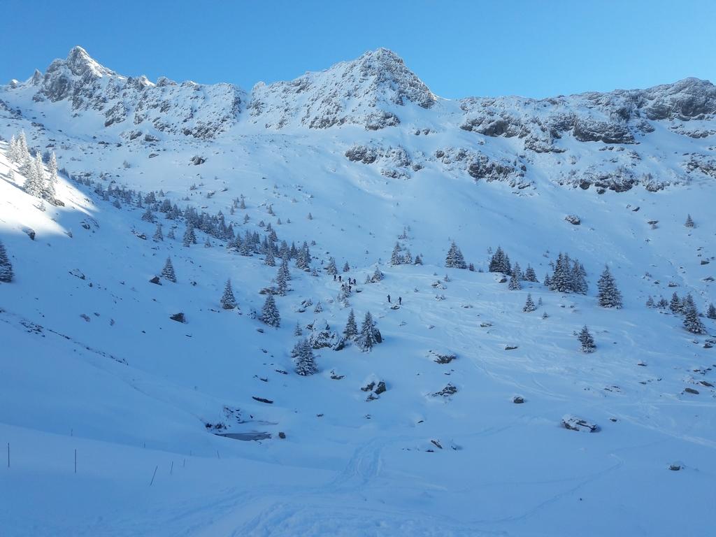 Randonnées effectué en hiver